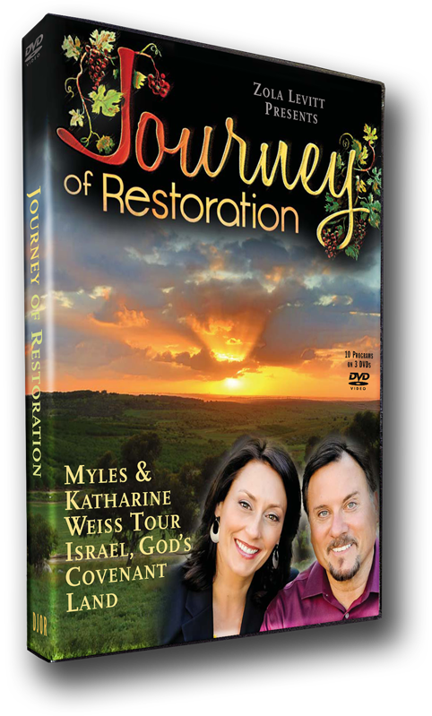 Reforestation and Revelation